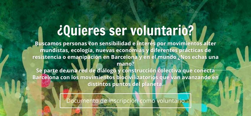 Voluntario Español
